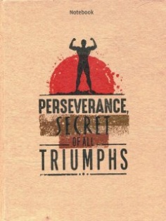 Notebook - Phong cách sống : Perseverance secret of all triumphs